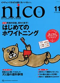 NICO18-11